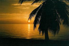 Islas de la Bahia de Honduras una aventura inolvidable