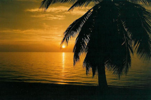Islas de la Bahia de Honduras