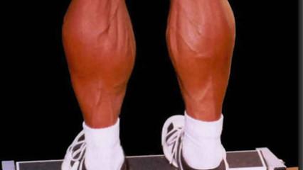 Las mejores piernas en nueva york - 1 4