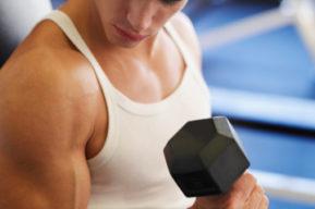 Bíceps braquial