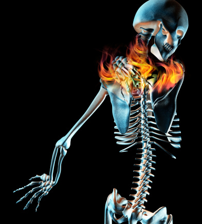 Anatomía: el hombro - Punto Fape