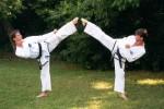 Flexibilidad y Artes Marciales