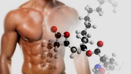 Beneficios de la Glutamina el aminoácido reparador