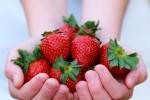 Cinco alimentos sanos para tu corazón