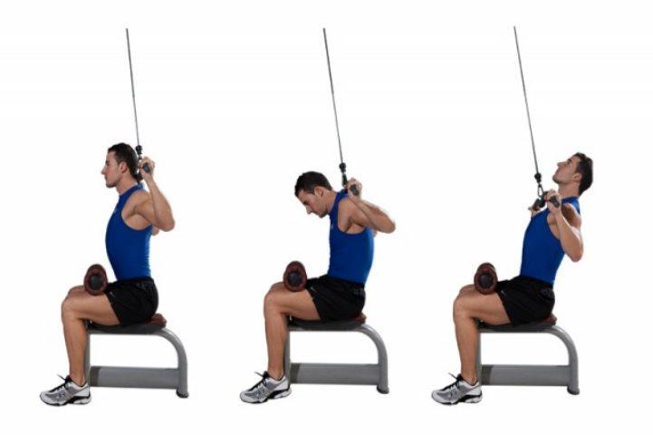 Musculaci n y buena postura punto fape for Sillas para una buena postura