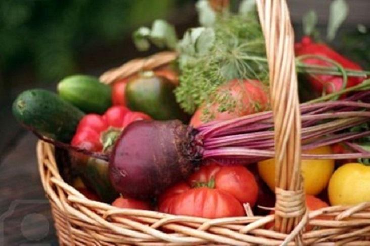 Hacer una cesta de la compra saludable en Navidad