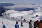 La Molina Nieve y  naturaleza a pleno en el Pirineo Catalán