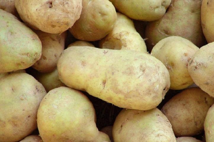 Beneficios de la patata en la dieta deportiva
