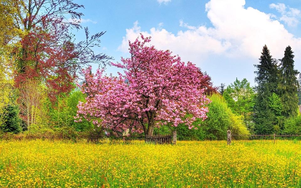 Cómo llenarte de energía física en primavera