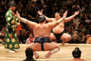 Sumo, una práctica que vuelve a tener vigencia