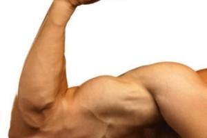 bajo crecimiento muscular