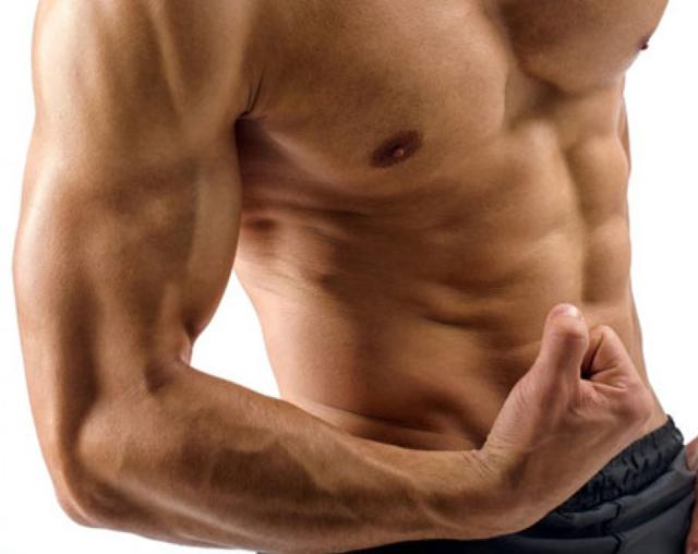 Musculación de los bíceps