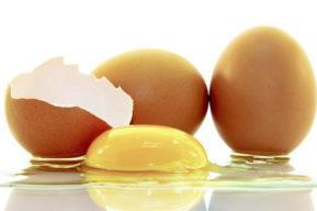 El huevo y sus proteínas