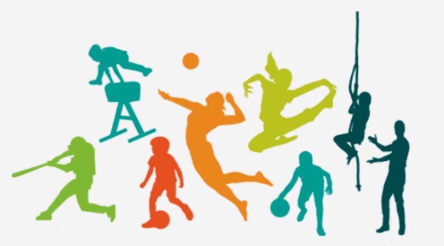 Estructuras formales y funcionales de los deportes for El gimnasio es un deporte