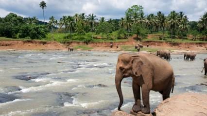 Destinos turísticos para una escapada en febrero
