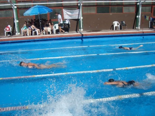 natacion recreativa