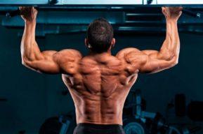 Musculación natural, flexiones y dominadas