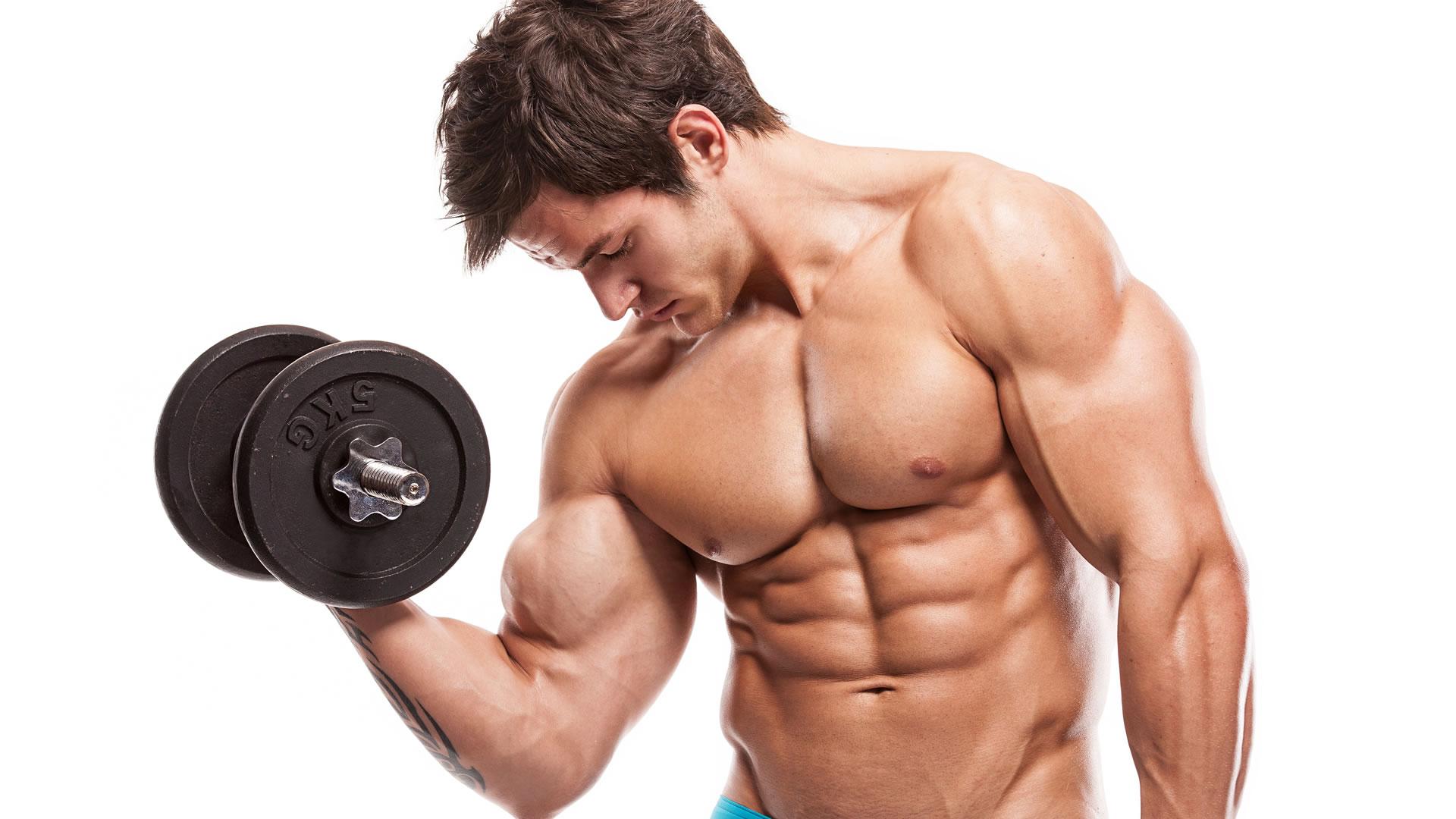 Todo sobre la hipertrofia muscular 1