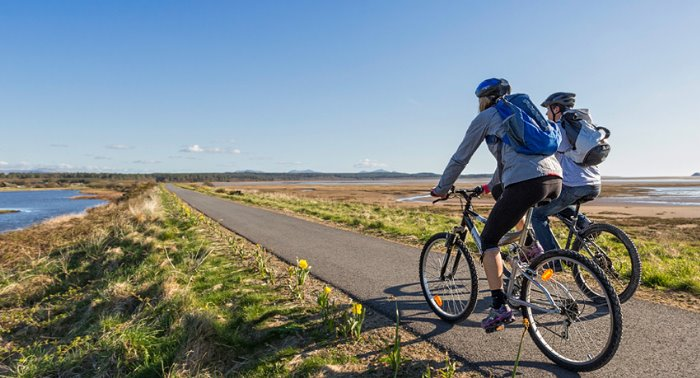 Bicicletas de carretera: Guía de compra para principiantes 1