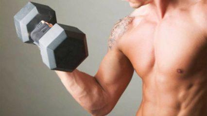 Principios de la hipertrofia muscular