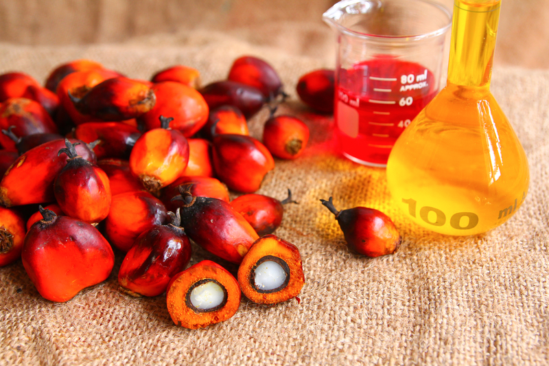 Todo lo que debes saber sobre el aceite de palma 1