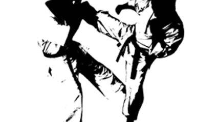 Características de los estilos de las artes marciales japonesas