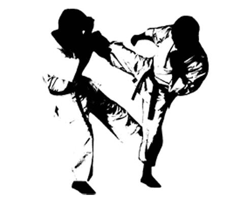 Características de los estilos de las artes marciales japonesas 1
