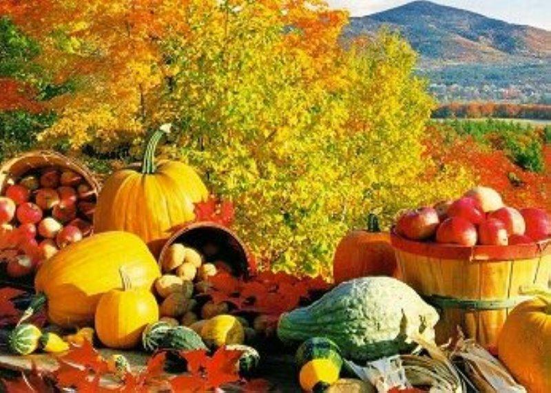 Dieta para adelgazar en otoño
