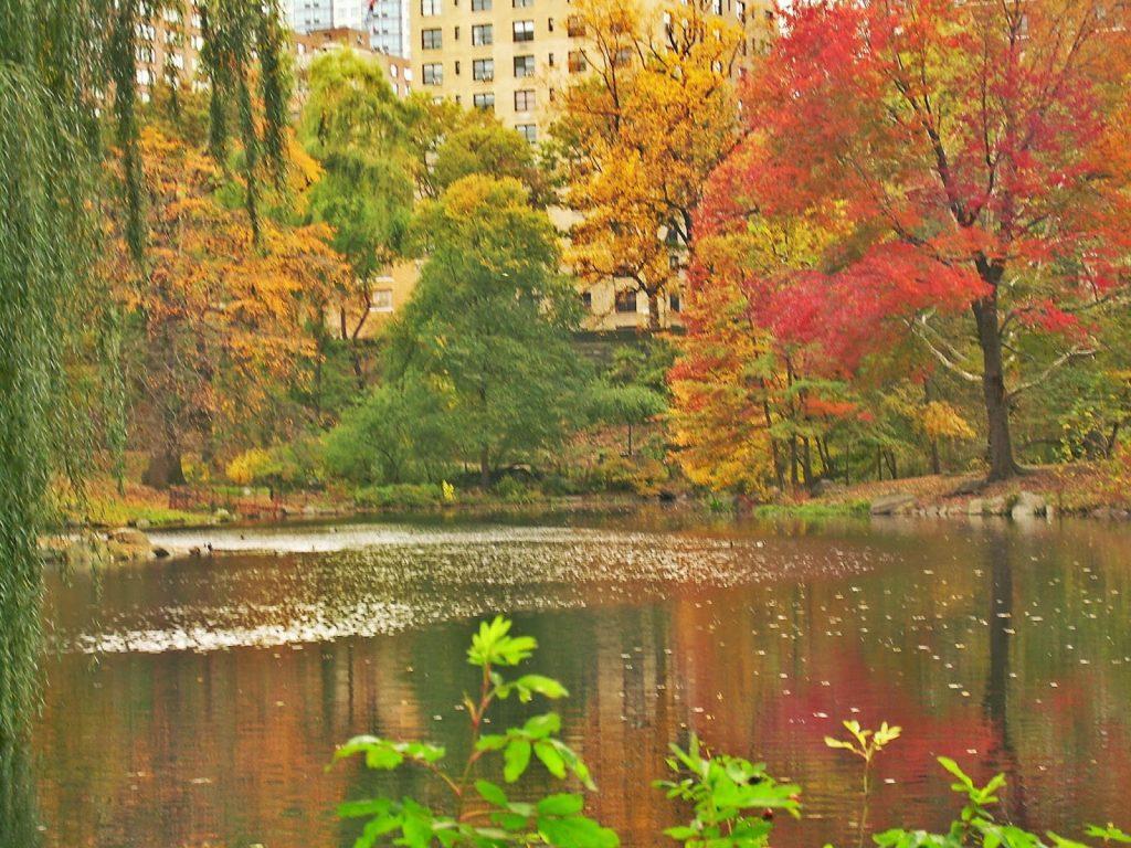 Vacaciones de otoño en Nueva York