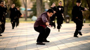 Artes marciales Chinas, el desarrollo interior y las formas