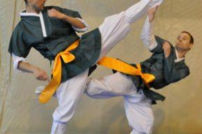 Taekkyon, arte marcial coreano