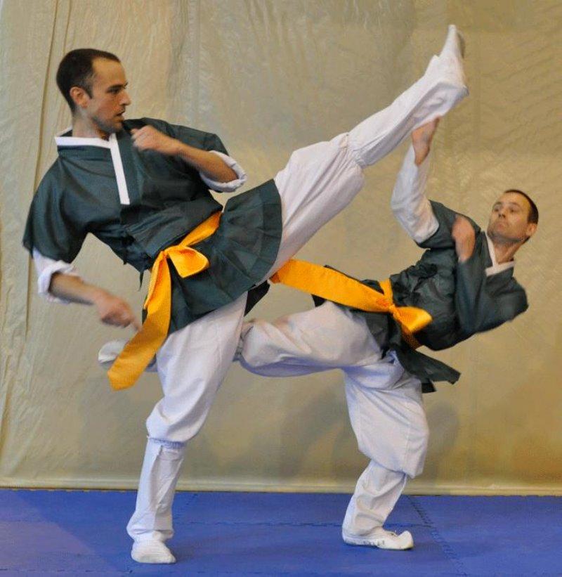 Taekkyon, arte marcial coreano 1