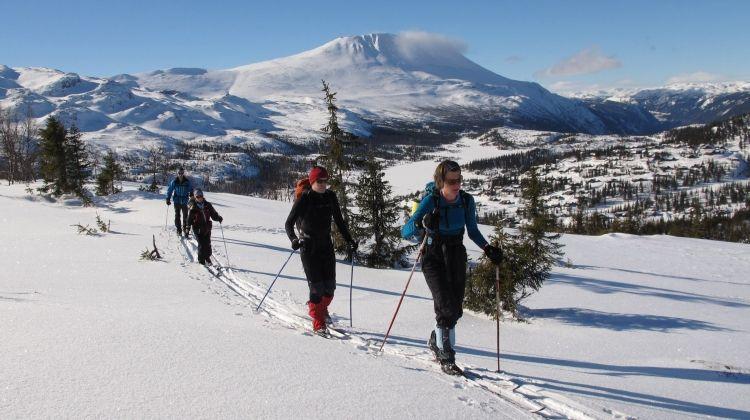 Esquí de travesía 1