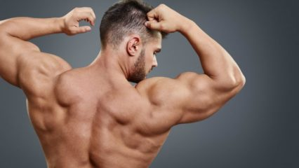 Espalda definida