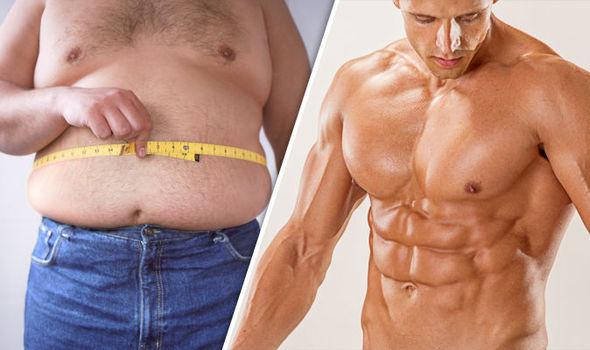 Productos Quema-Grasas masculinos para eliminar adiposidades 1