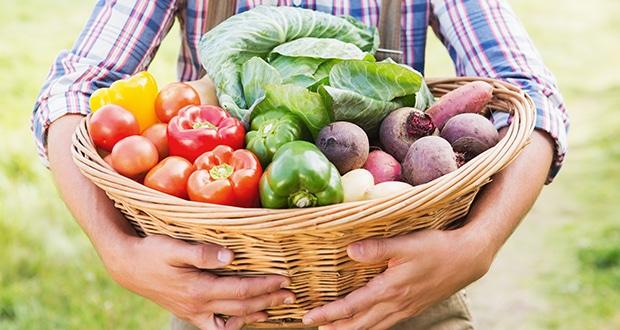 Cómo llevar una dieta saludable 2
