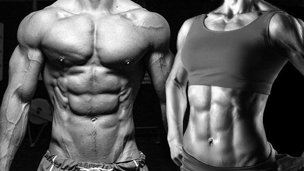 Aprende las leyes de la musculación y del culturismo 1