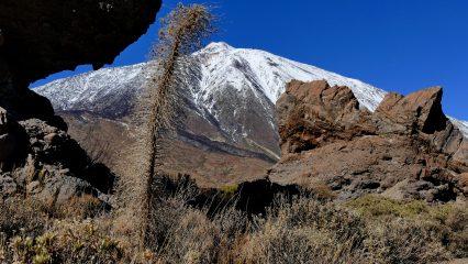 Los Roques de García y el Teide